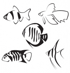 Fish line drawing vector