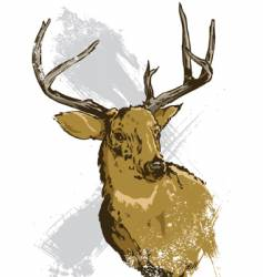 Deer illustration vector