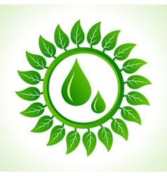 Water drops inside the leaf background vector