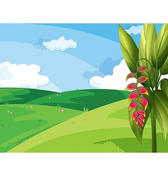 A beautiful landscape vector
