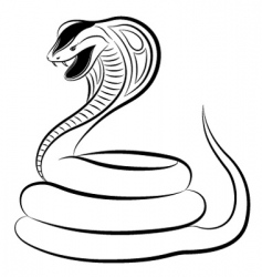 Cobra snake vector