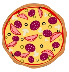 Isolated pizza vector