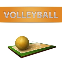 Volleyball ball and field emblem vector