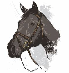 Horse illustration vector