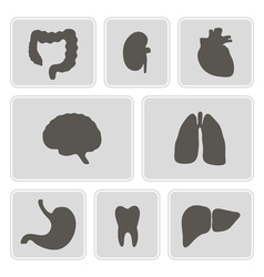 Monochrome icons with organs of the human body vector