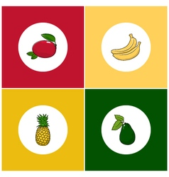 Round white fruit icons on colorful background vector
