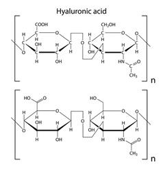 Hyaluronic acid vector