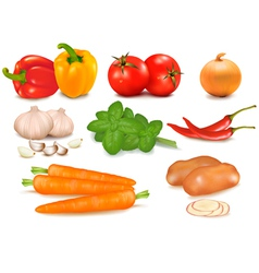 Big colorful group of vegetables vector