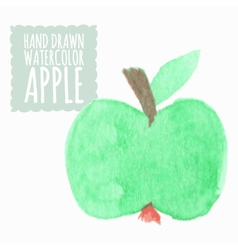 Watercolor or aquarelle apple vector