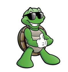 Smiling turtle vector