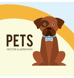Pets poster vector