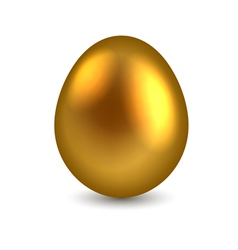 Golden egg isolated on white background vector