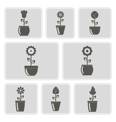Monochrome icons with flowers in the pots vector