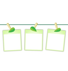 Blank photos with green leaves on clothesline vector