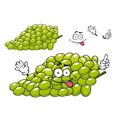 Cartoon green grape bunch character vector