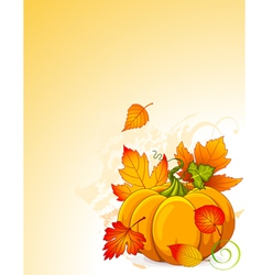 Autumn pumpkin vector