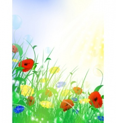 Flower meadow vector