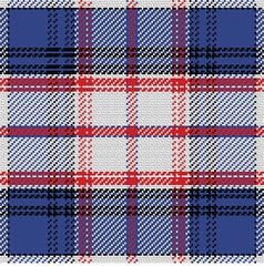 Seamless pattern scottish tartan state of florida vector