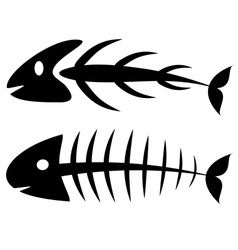 Fishbone vector