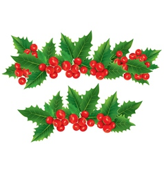 Christmas garland of holly berries vector