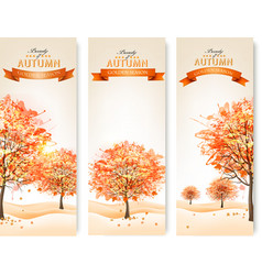 Three autumn abstract banners with colorful leaves vector
