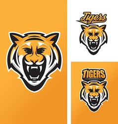 Tiger mascot for sport teams vector