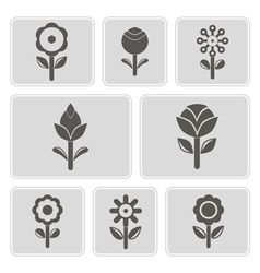 Monochrome icons with flowers vector