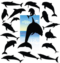 Dolphin black silhouettes vector