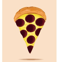 Pepperoni is a popular pizza topping vector