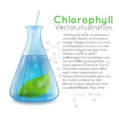 Chemical flask vector