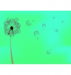 Dandelion against green background vector