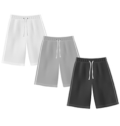 Sport shorts template vector