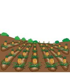 Pineapples fruit cartoon vector