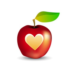 Icon of tasty apple with heart vector