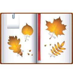 Autumn notebook vector