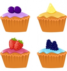 Berry cupcakes vector