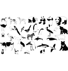 Black and white animals vector