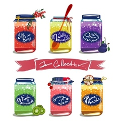Bright canned sweet fruit jam collection vector