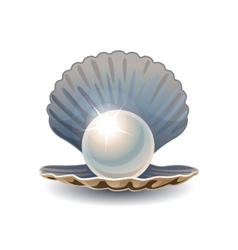 Shiny pearl in opened seashell vector