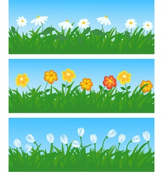 Spring flowers and grass vector