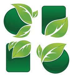 Leaf frames and forms vector