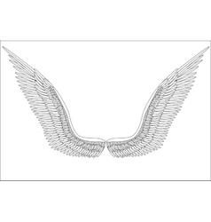 Sketch open angel wings vector