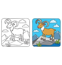Funny wild urial or ram coloring book vector