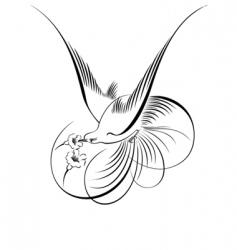 Decorative script  detailed vector