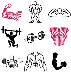 Logo icons muscle vector