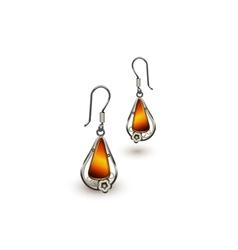 Amber earrings vector