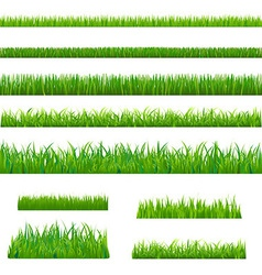 Big green grass vector