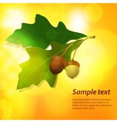 Autumn acorn background vector