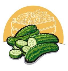 Fresh cucumbers vector