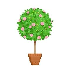Flowering tree in a pot vector